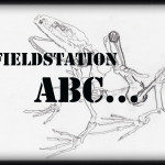 Fieldstation ABC